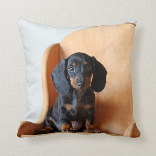 McCoy the Dachshund Square Pillow