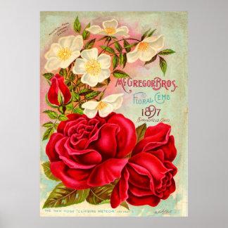 McGregor Bros. Floral Gems Advertisement Poster