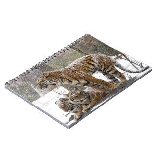 mckee-121413-44 notebooks