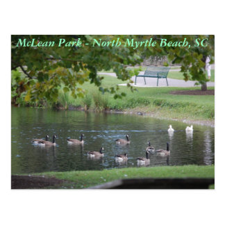 McLean Park - North Myrtle Beach, South Carolina Postcard