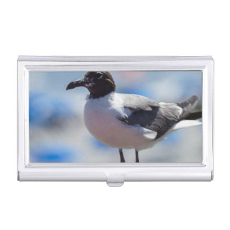 Me A Seagull Case For Business Cards