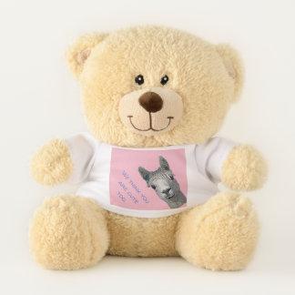 Me and Meg Teddy Bear