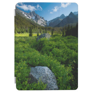 Meadow and Mt. Stuart iPad Air Cover
