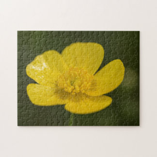 Meadow Buttercup Jigsaw Puzzle