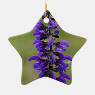 Meadow clary or meadow sage ceramic star ornament