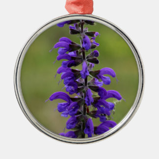 Meadow clary or meadow sage Silver-Colored round ornament