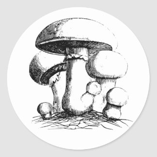 Meadow Mushrooms Stickers