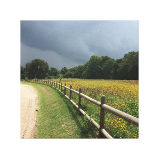 Meadow & Storm Photo Canvas Print