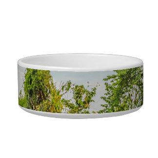 Meadow Tropical Landscape Scene, Guayaquil Bowl