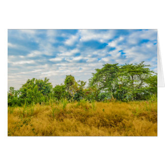 Meadow Tropical Landscape Scene, Guayaquil Card