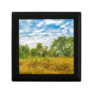 Meadow Tropical Landscape Scene, Guayaquil Gift Box
