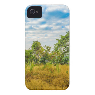 Meadow Tropical Landscape Scene, Guayaquil iPhone 4 Covers