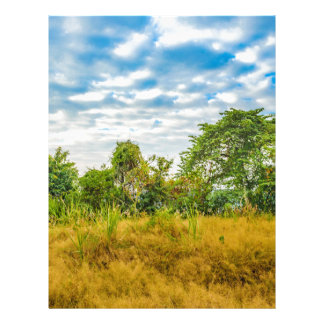 Meadow Tropical Landscape Scene, Guayaquil Letterhead