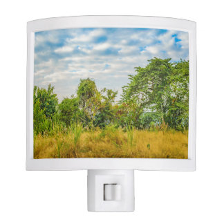 Meadow Tropical Landscape Scene, Guayaquil Night Light