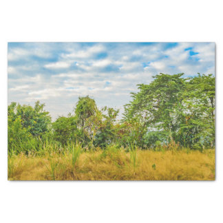 Meadow Tropical Landscape Scene, Guayaquil Tissue Paper