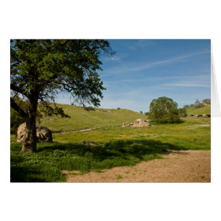 Meadow with Live Oaks and Boulders Card