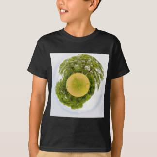 Meadow with trees like little planet T-Shirt