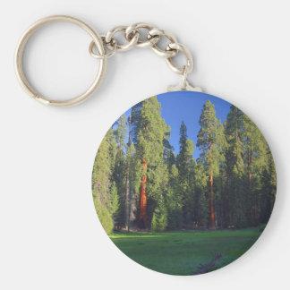 Meadows Sequoia Keychain