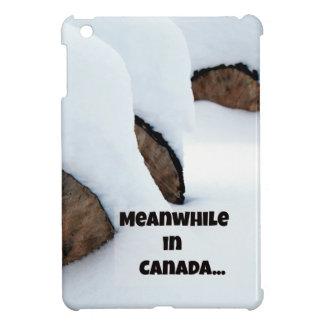 Meanwhile in Canada... iPad Mini Case