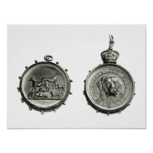 Medals from Cruft's Dog Show, c.1910 Print