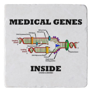Medical Genes Inside DNA Replication Genetics Trivet