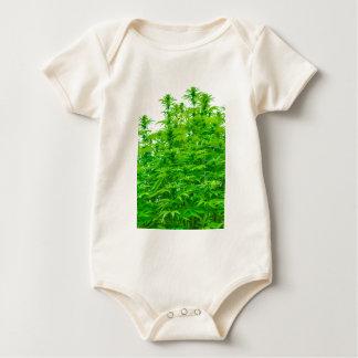 Medical Marijuana: Female Budding Cannabis Plant Baby Bodysuit
