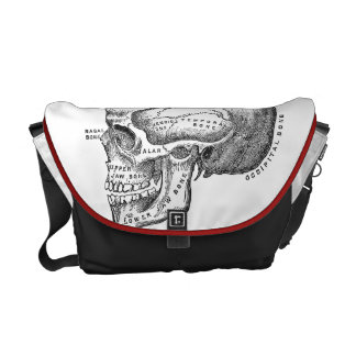 Medical Skull Bag - Anatomy Bag Messenger Bag