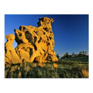 Medicine Rocks State Park near Ekalaka Montana Postcard