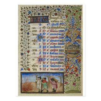 Medieval calendar: February Postcard