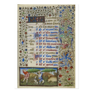 Medieval calendar: November Postcard