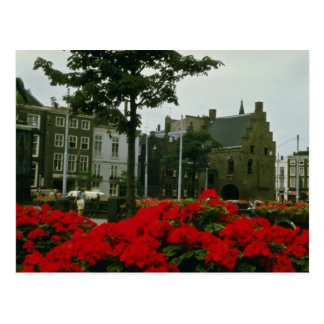 Medieval Prison In The Hague flowers Postcard
