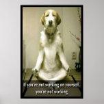 Meditating Dog Poster