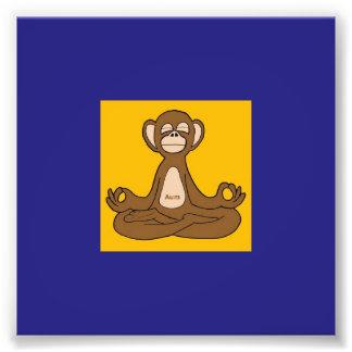 Meditating Monkey Art Photo