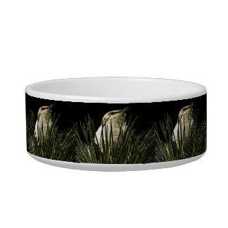 medium pet bowl