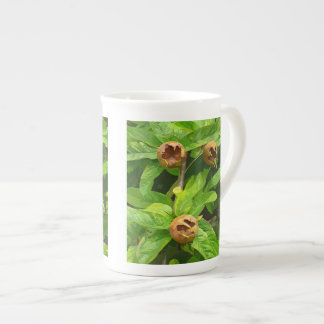 MEDLAR FRUIT TEA CUP