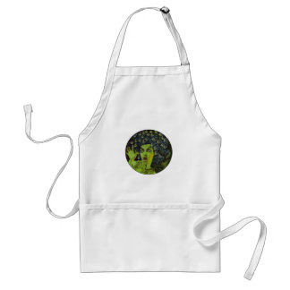 MEDUSA THE WARRIOR STANDARD APRON