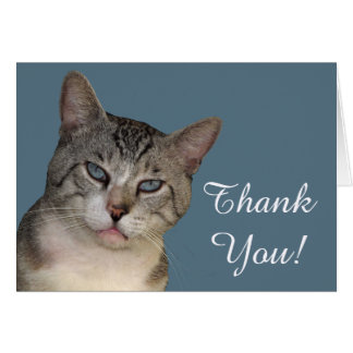 Meece The Cat Thank You Card