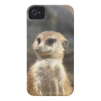 Meercat iPhone 4 Case-Mate Case