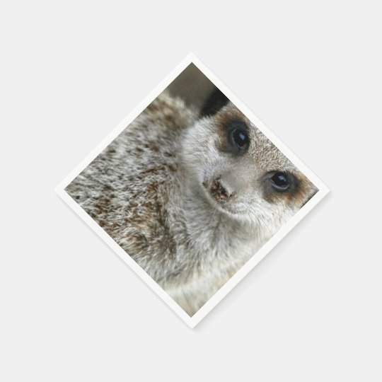 meerkat-16.jpg disposable napkins