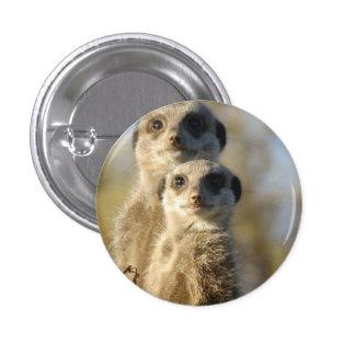 Meerkat 1 Inch Round Button