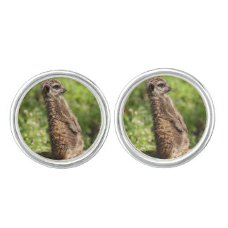 Meerkat_20171001_by_JAMFoto Cufflinks