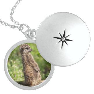 Meerkat_20171001_by_JAMFoto Sterling Silver Necklace