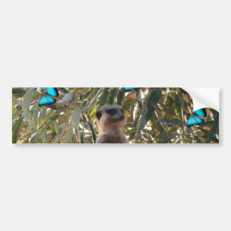 Meerkat And Blue Butterflies, Bumper Sticker
