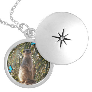 Meerkat And Blue Butterflies, Locket Necklace