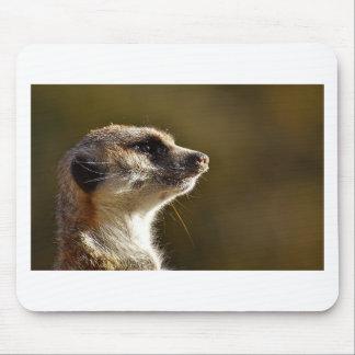 Meerkat Animal Nature Zoo Tiergarten Small Fur Mouse Pad