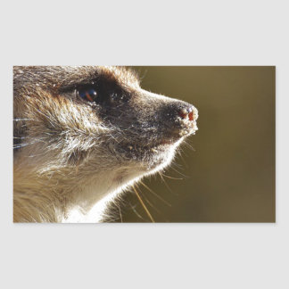 Meerkat Animal Nature Zoo Tiergarten Small Fur Sticker