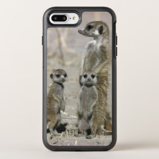 Meerkat Baby Sitter And Pups ( Suricata Suricata ) OtterBox Symmetry iPhone 7 Plus Case
