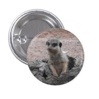 Meerkat Badge 1 Inch Round Button