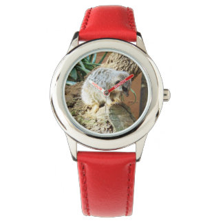 Meerkat Cat Naps, Kids Red Leather Watch. Watch