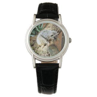 Meerkat Cat Naps, Ladies Black Leather Watch. Watch
